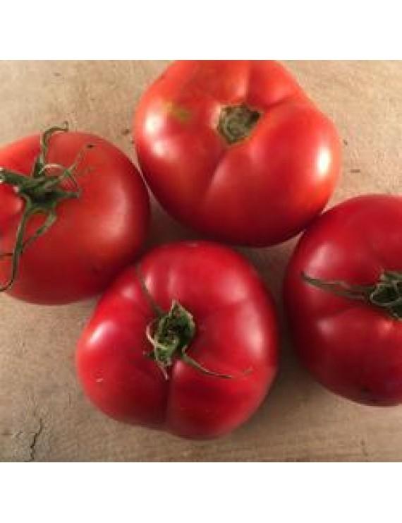 Seeds - Tomato - Montreal Tasty