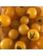 Seeds - Cherry Tomato - Galina
