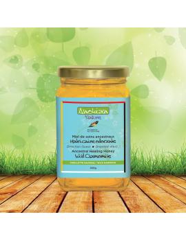 Wild chamomile ancestral healing honey
