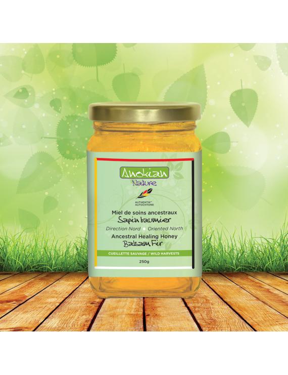 Balsam fir ancestral healing honey