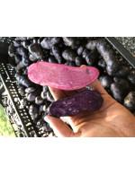 ratte potato (purple or pink)