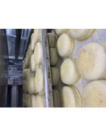 English muffins FROZEN