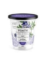 Blueberry Oats yogourt alternative