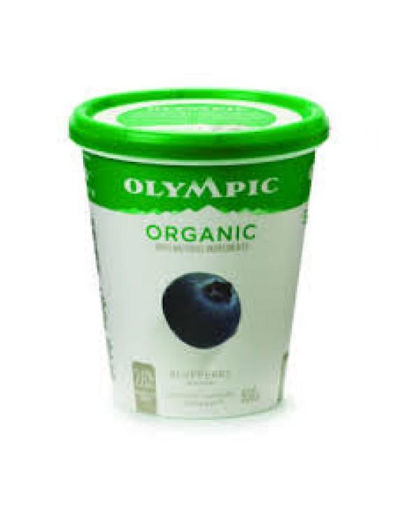 Blueberry yogourt 3% 650g