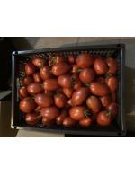 Heirloom Amish Paste Tomatoes