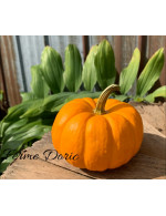 Tiny orange pumpkin
