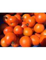 Cherry tomatoes, red
