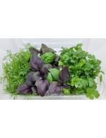 Microgreens mix #4
