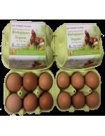 Egg Organic large