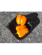 Sweet Orange Bell Pepper – organic Sold by weight