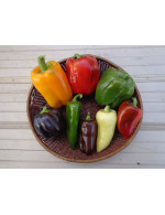 Assorted Bell Peppers – organic