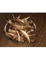 Dried wild Mushroom