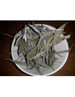 Dried Sage - 125 ml reutilisable pot