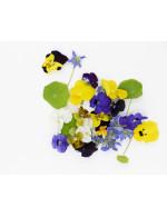Edible Flowers 40pces