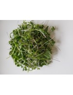 """Milder Mix"" blend of shoots freshly cut 150g"