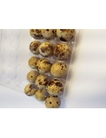 Quail eggs, fed with organic grains