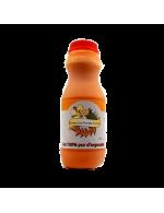Sea buckthorn 100% pur juice