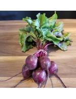 Organic beet bunch